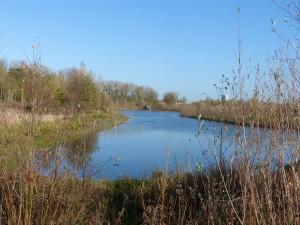 59 26 Un étang