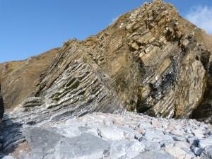 79.3 37 Schistes et calcaire de l'armorique