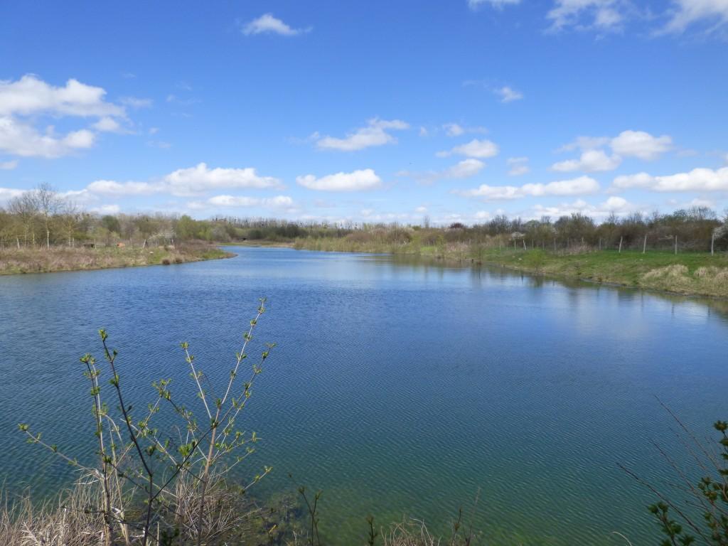 86.1 66 Un étang