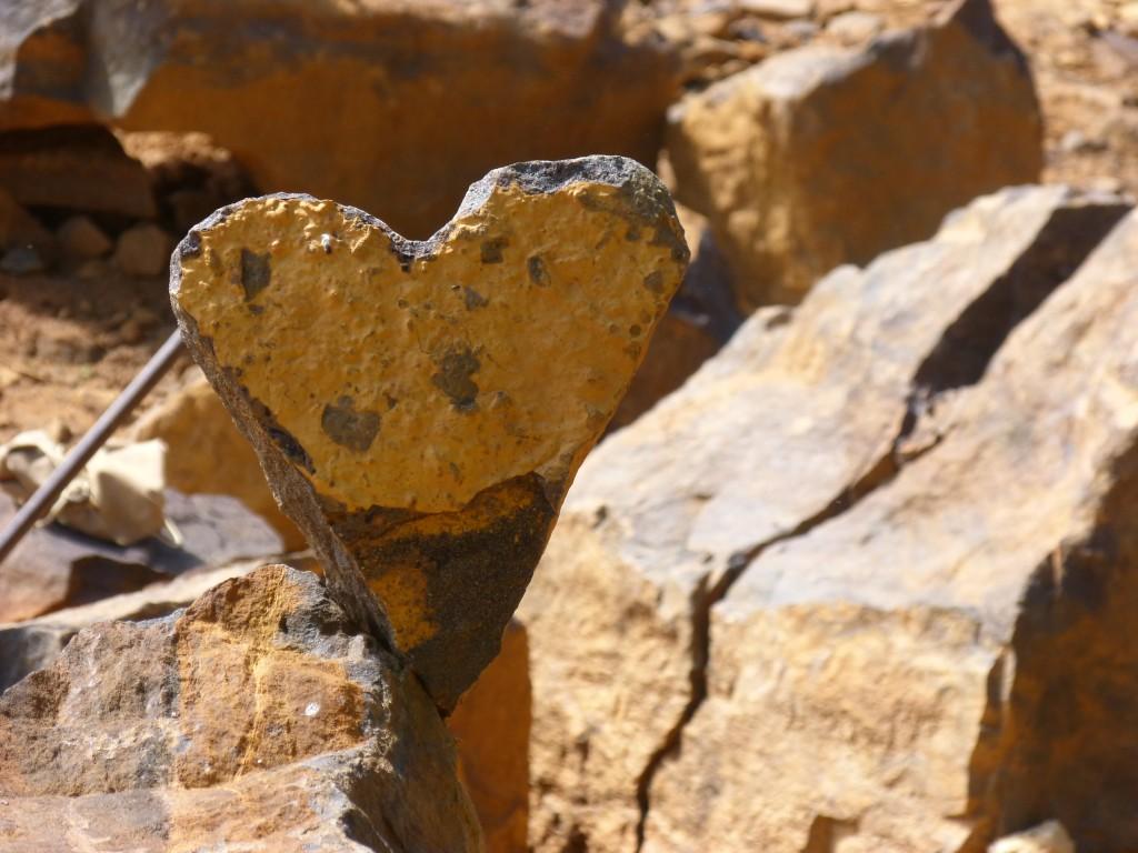HS2 054 Un coeur de pierre