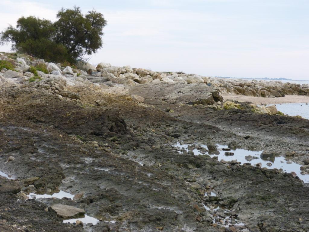 Des roches penchées