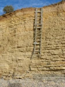 69 101 L'échelle stratigraphique
