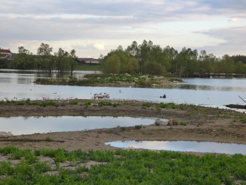 92-07-le-paysage