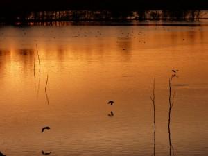 94-2-78-le-coucher-de-soleil
