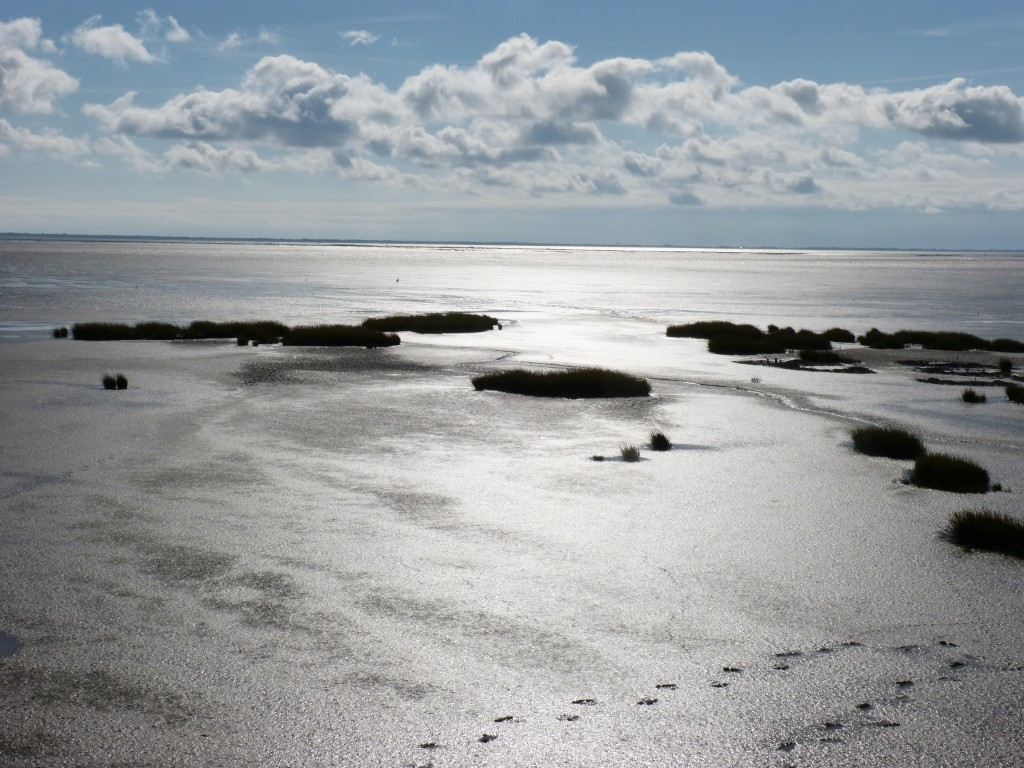 110-2 61 Au revoir la mer